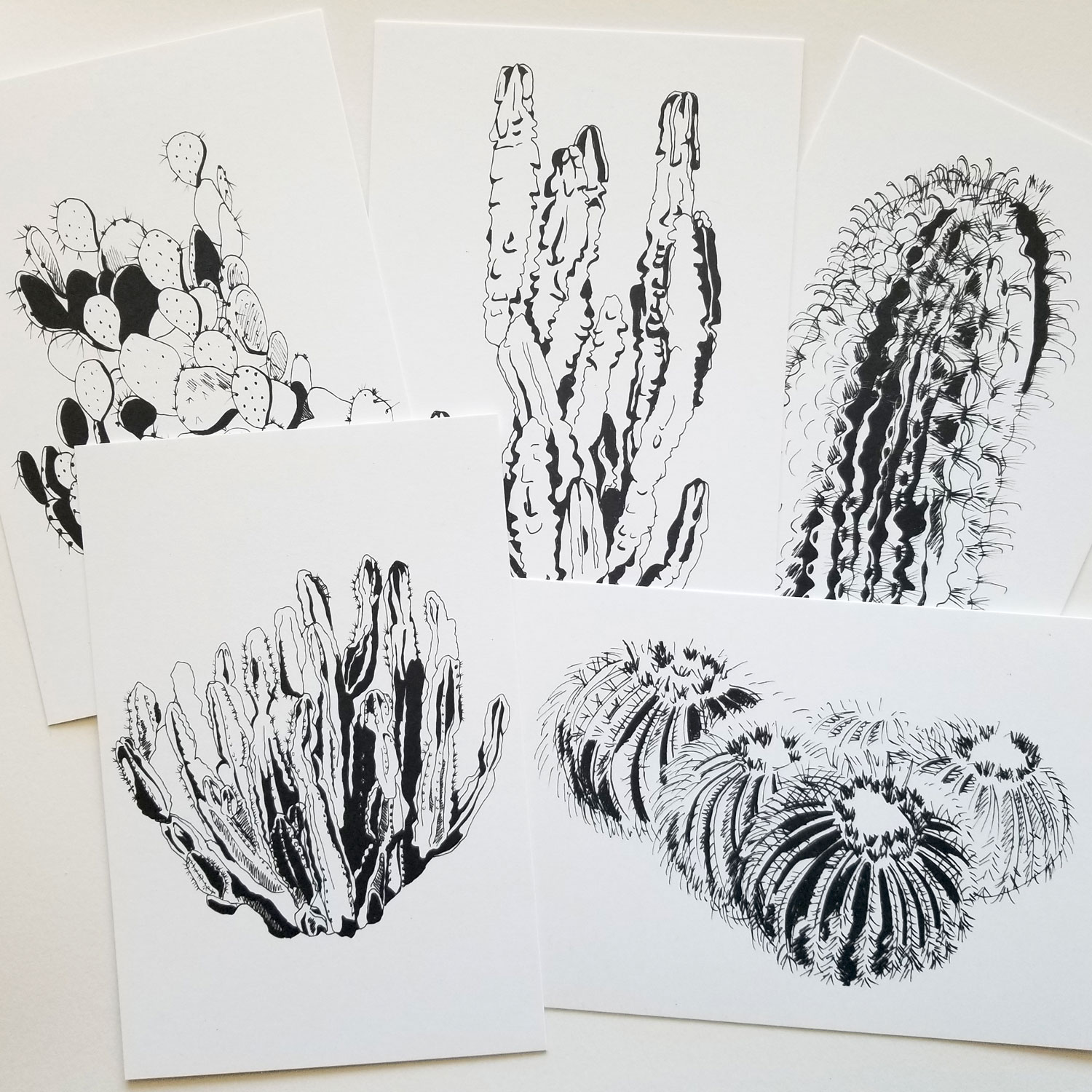 Illustrated cactus on 4x6 cards