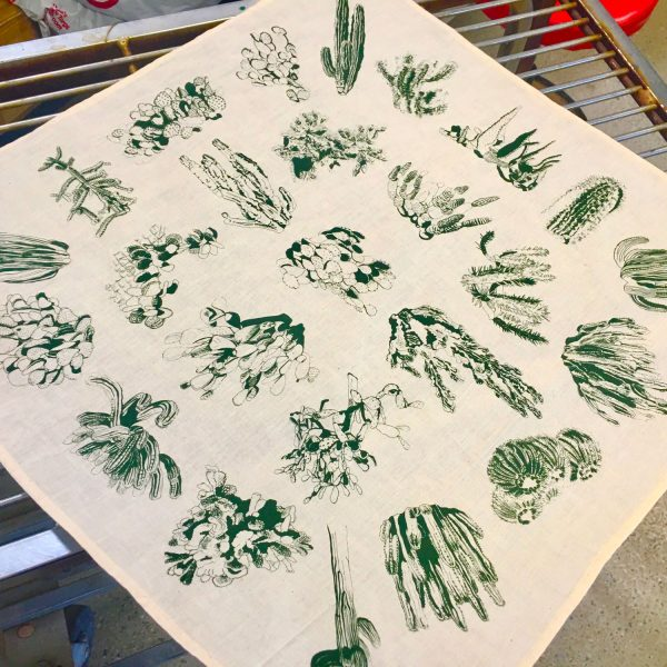 Cactus bandana with 25 cactus illustrations